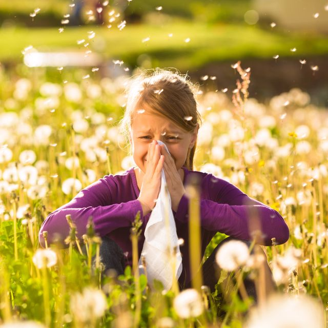 Young girl sneezing in field of flowers
