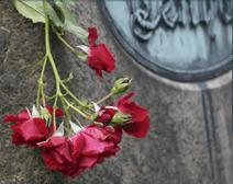 agenzia funebre, addobbi per funerali, organizzazione funerale