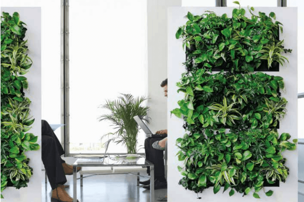 Interior Office Plants And Flowers | Reception Plants U0026 Flowers |  Provincial Planters