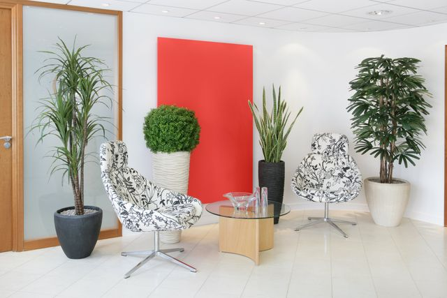 Replica And Artificial Plants | No Or Low Maintenance