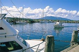 Think, nsw amateur fishing association