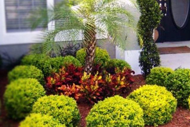 Red bud landscaping irrigation inc lawn maintenance for Landscape design orlando