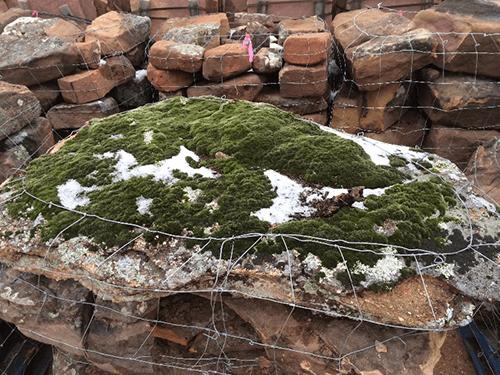 Landscaping rocks midland houston tx natural sandstone for Landscaping rocks midland tx