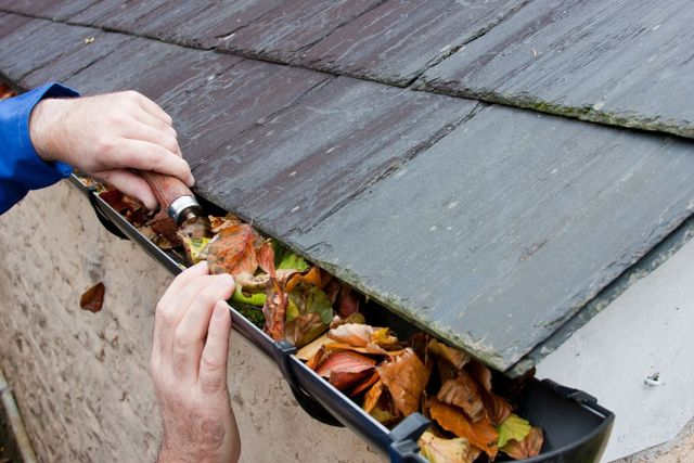 Cleaning blocked gutters to prevent interior damp