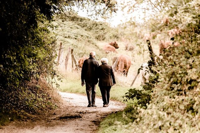 Walking and Aging