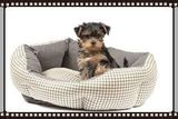 yorkie-puppy-in-dog-bed-