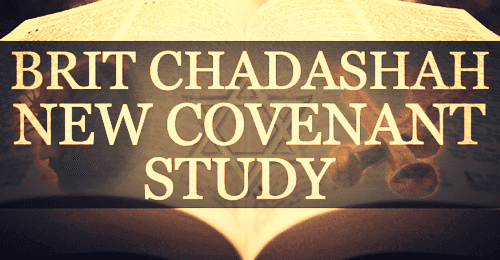 Join Synagogue Chavurat HaMashiach for our Brit Chadashah study!