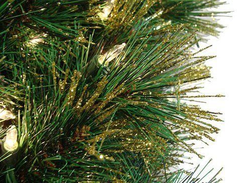 pine tips