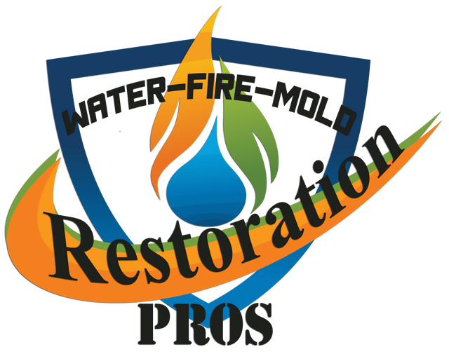 water fire mold damage restoration pros