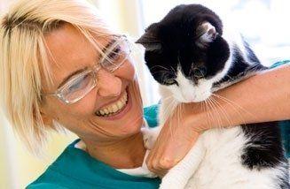 Visite e consulenze di animali domestici