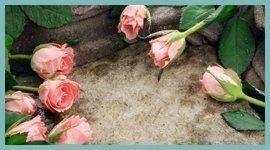 onoranze funebri, servizi cimiteriali