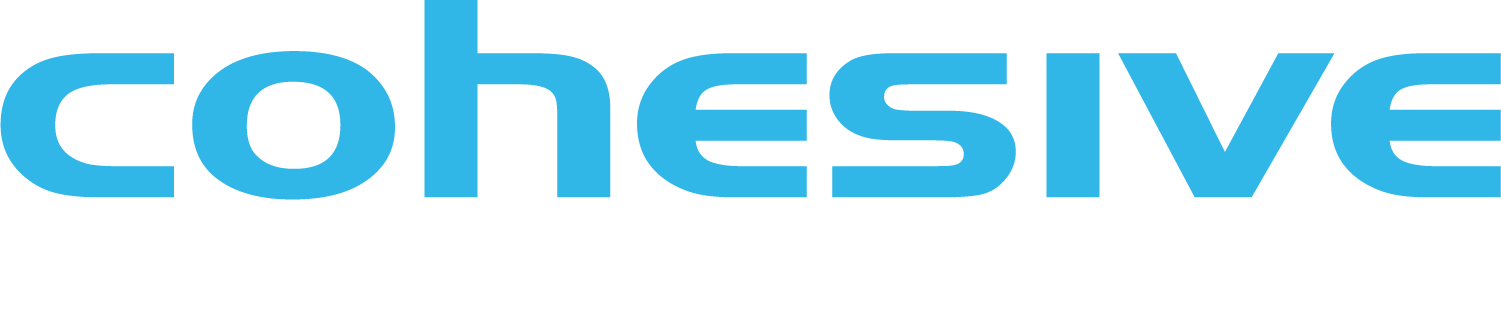 VNS3 Controller Known Issues | Cohesive Networks