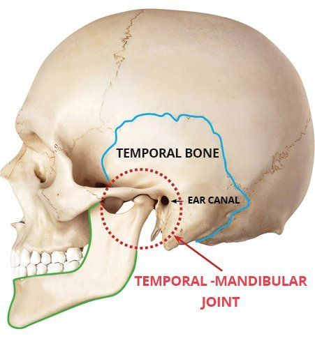 Common Jaw Exercises In The Treatment Of Tmj Dysfunction