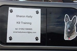 Image Result For Dog Training Classes Telford