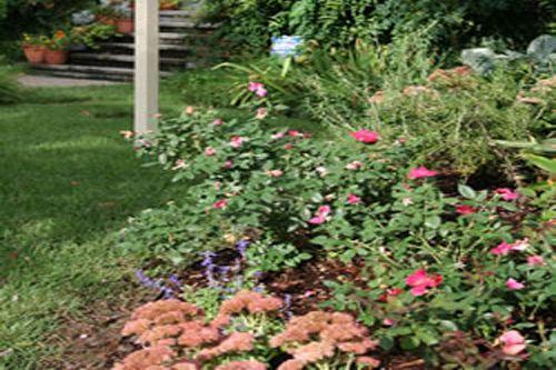 Garden Design Sherwood, AR