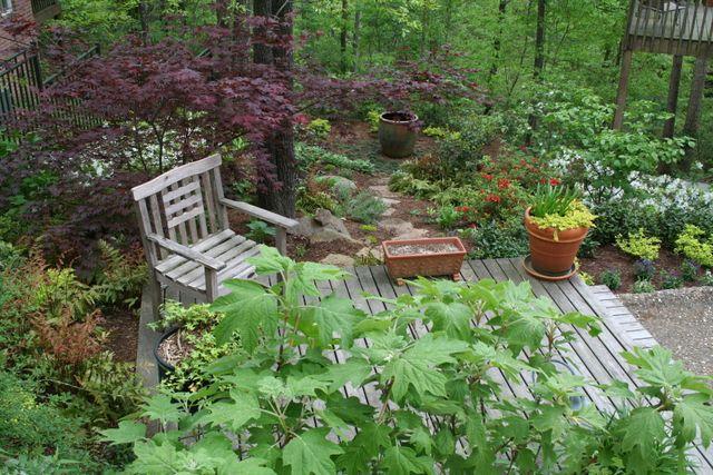 Landscape Design Conway, AR