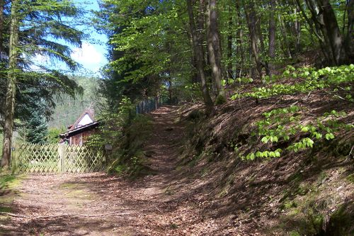 Der Verein Willkommen beim Pfälzerwald-Verein Ortsgruppe Elmstein e.V.!  Unser Ziel ist