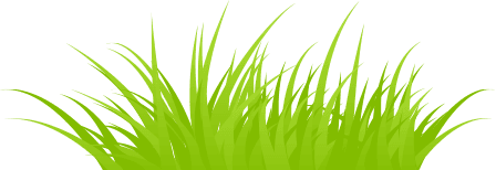 Professional Grass Cutting Services In Chester