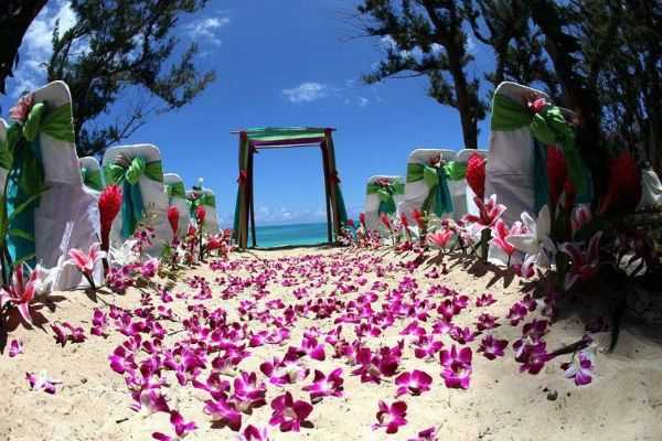 una spiaggia con le sedie decorate e delle orchidee sulla sabbia per una cerimonia