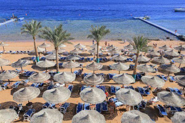 una spiaggia di Sharm El Sheik con palme e ombrelloni