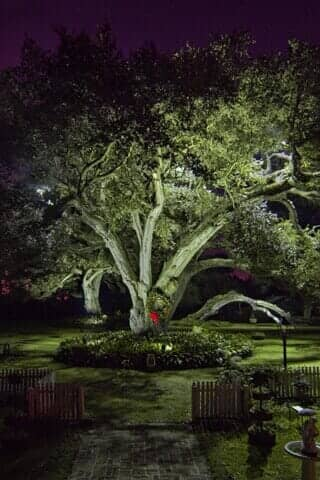 Landscapes baton rouge louisiana artistry of light by mary t wiley landscape lighting for your home or business in south louisiana aloadofball Images