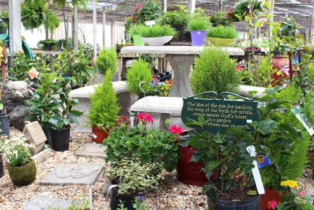 statuary_garden