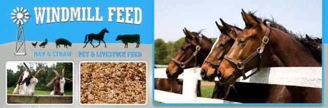 animal feed | Woodland, California | Windmill Feed