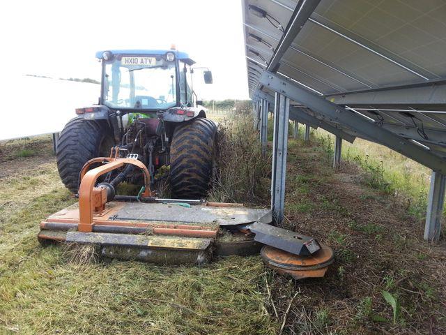 grass cutting under solar farm  panels