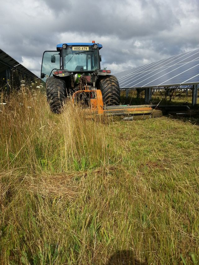 solar farm panels with grass cutting in progress