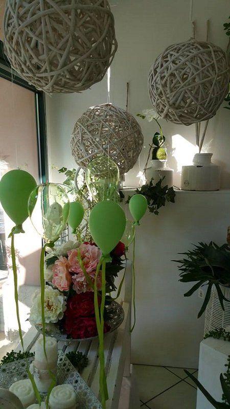 due vasi di cactus