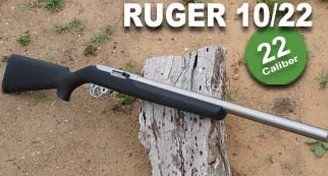 Ruger 10/22