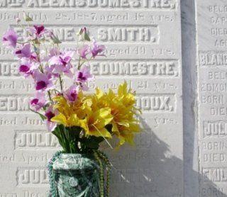 un vaso con dei fiori