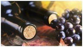 bottiglie di vino con grappoli di uva