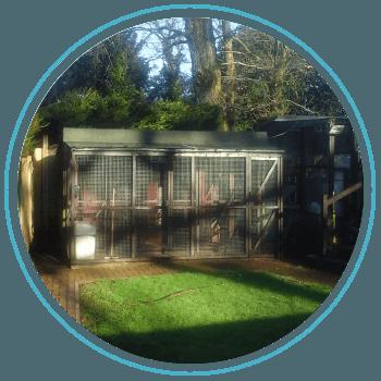 cattery garden setting