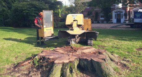 stump grinding machines