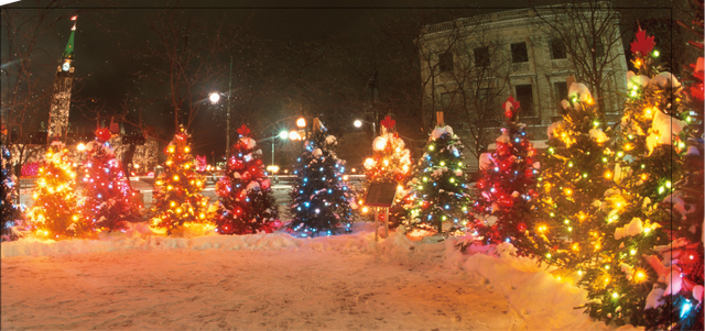 Christmas Tree Decorating Contest, corry credit union