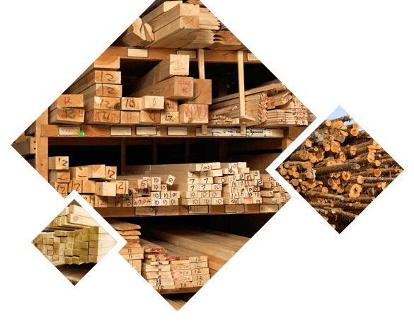Timber Materials And Timber Merchants In Rugby And Coventry