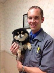 Pet Care Fort Wayne Indiana Allen Veterinary Hospital