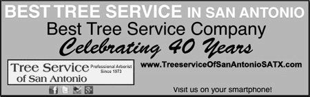 Best Tree Service in San Antonio