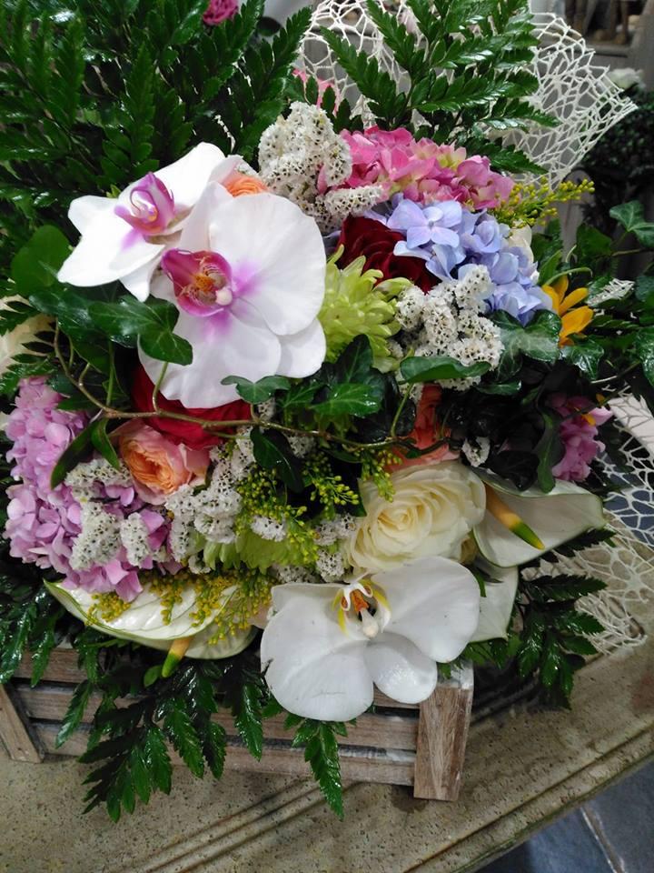 Delle orchidee di color bianco