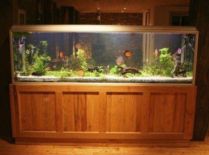 acquario pesci legno