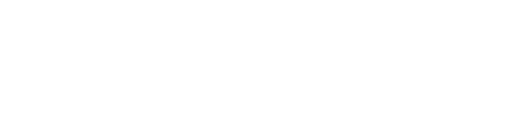 Fire Wings Logo White