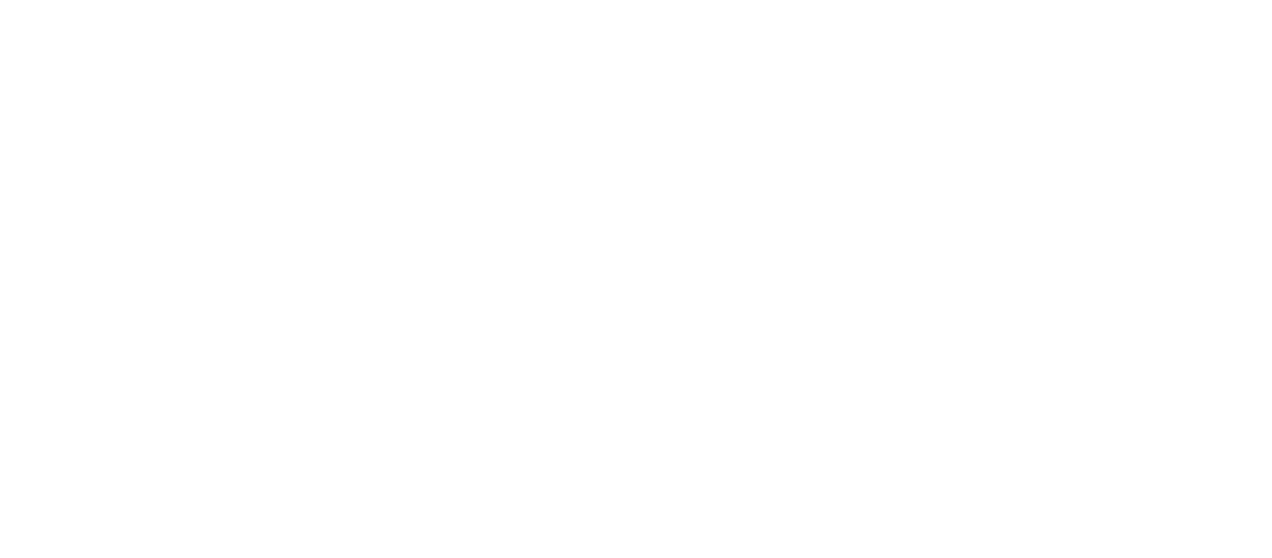 Financial Policy