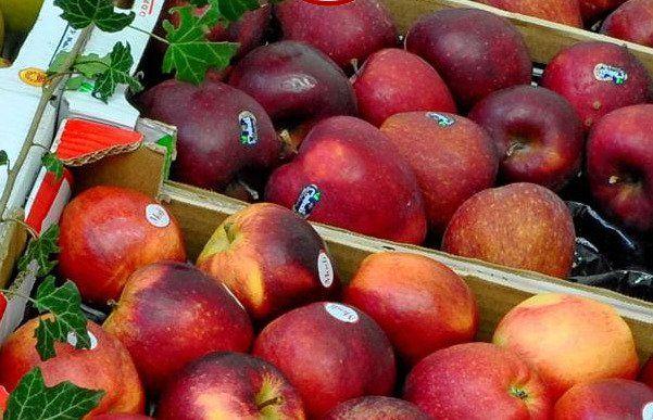 Alcune cassette di mele rosse con delle etichette