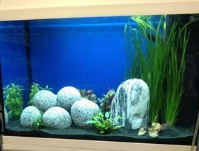 Jewel Aquariums