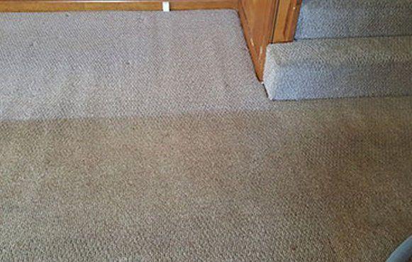 Effective carpet odor elimination