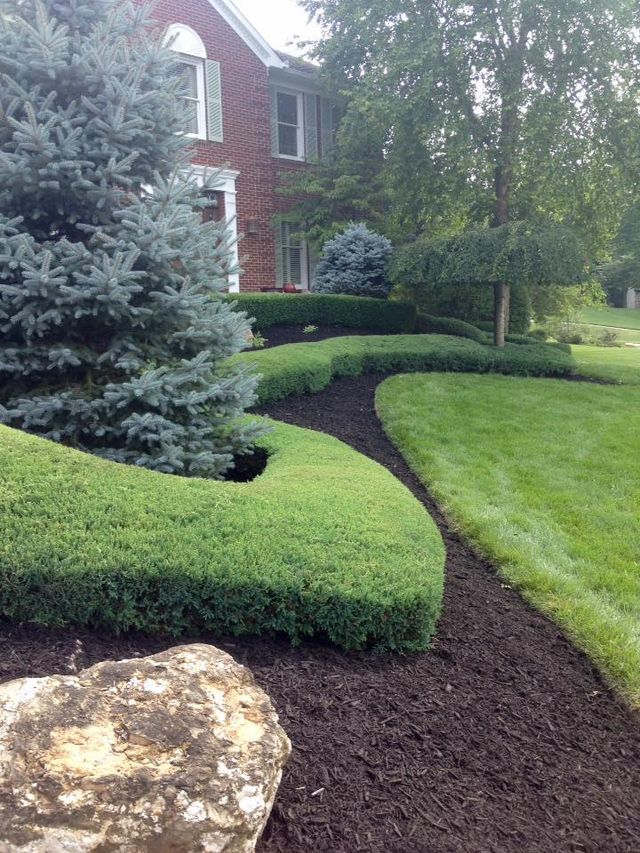 Lawn care and landscaping expert in Cincinnati, OH