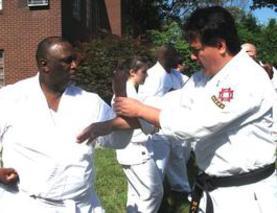 2015 virignia okinawan karate dojo cooperation