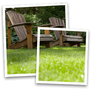 Paving - North West - Collins Landscapes Ltd - wooden chair macro grass