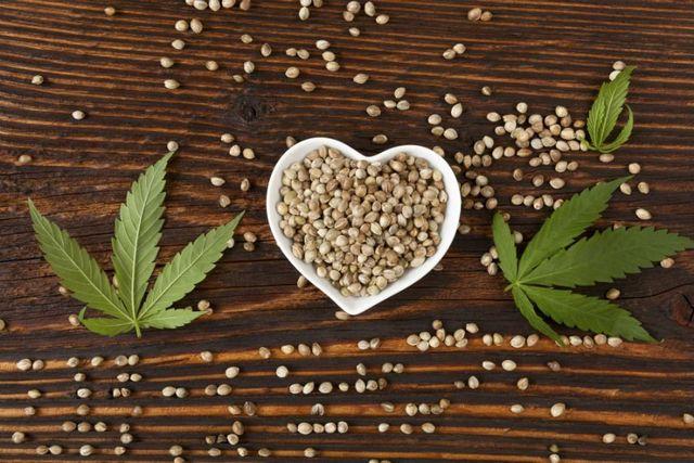 dei semi in un contenitore a forma di cuore e delle foglie di canapa
